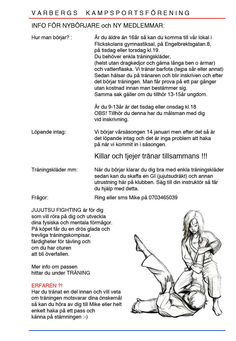nybörjar info hemsidan20.ppt